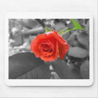 A Rose of Hope Mousepad