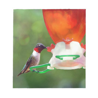 A Ruby Throated Hummingbird Notepad