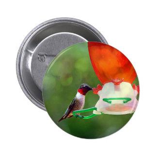 A Ruby Throated Hummingbird Pinback Button
