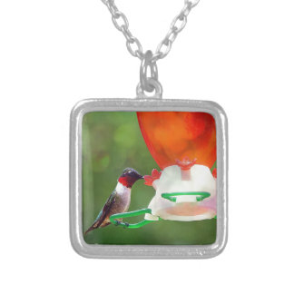 A Ruby Throated Hummingbird Silver Plated Necklace
