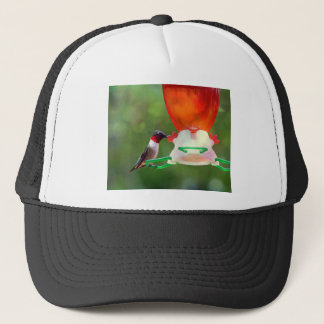 A Ruby Throated Hummingbird Trucker Hat