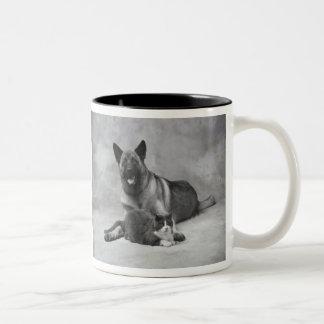 A.S.K. - Dog & Cat Two-Tone Coffee Mug