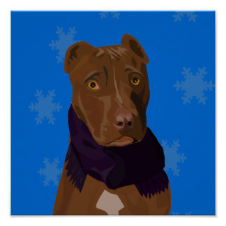 A Sad Pit Bull with a Scarf Poster