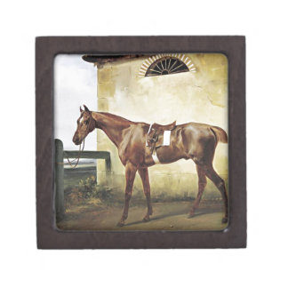 A Saddled Race Horse Tied to a Fence by Horace Ver Jewelry Box