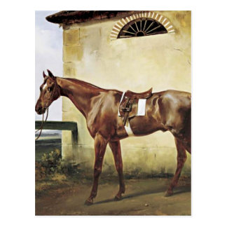 A Saddled Race Horse Tied to a Fence by Horace Ver Postcard