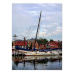 A Sailboat in Annapolis Harbor Post Cards