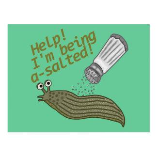 A Salted Slug Pun Postcard