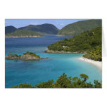A scenic of Caneel Bay from a road at St. John Cards