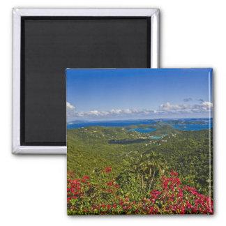 A scenic of Cruse Bay, St. John U.S Virgin 2 Inch Square Magnet