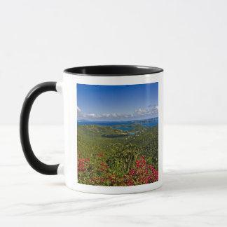 A scenic of Cruse Bay, St. John U.S Virgin Mug
