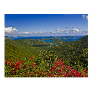 A scenic of Cruse Bay, St. John U.S Virgin Postcard
