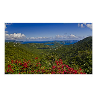 A scenic of Cruse Bay, St. John U.S Virgin Poster