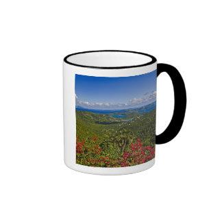 A scenic of Cruse Bay, St. John U.S Virgin Ringer Mug