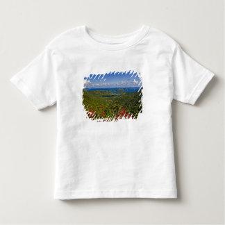 A scenic of Cruse Bay, St. John U.S Virgin Toddler T-shirt