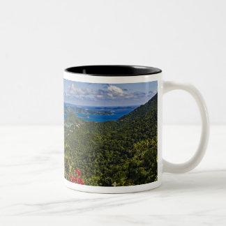 A scenic of Cruse Bay, St. John U.S Virgin Two-Tone Coffee Mug