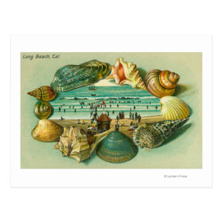 A Scenic View Bordered with Sea Shells Postcard