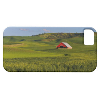A scenic view of a barn in Moscow Idaho. iPhone 5 Cases