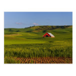 A scenic view of a barn in Moscow Idaho. Postcard