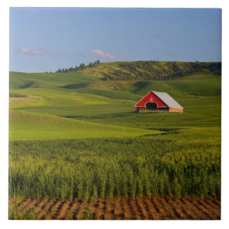 A scenic view of a barn in Moscow Idaho. Tile