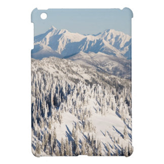 A Scenic View of Snowy Mountains and Trees. Cover For The iPad Mini