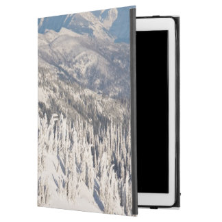 A Scenic View of Snowy Mountains and Trees. iPad Pro Case