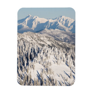 A Scenic View of Snowy Mountains and Trees. Magnets
