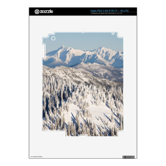 A Scenic View of Snowy Mountains and Trees. iPad 3 Skins