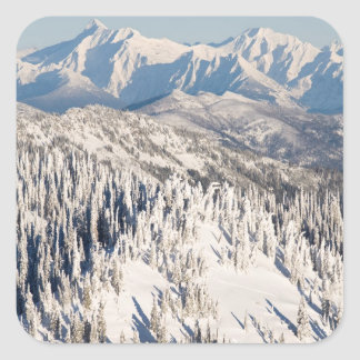 A Scenic View of Snowy Mountains and Trees. Square Sticker