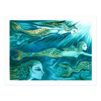 A School of Mermaids swim by Postcard