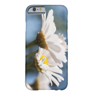 A sea OF of daisies against A blue sky Barely There iPhone 6 Case