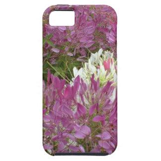 A sea of purple flowers in full bloom summertime iPhone SE/5/5s case