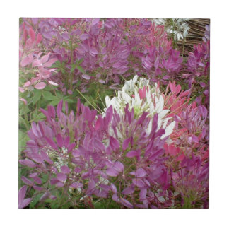 A sea of purple flowers in full bloom summertime small square tile