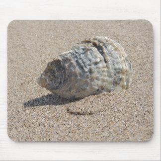 A sea shell. mouse mats