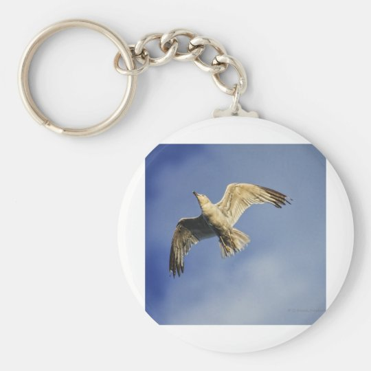 A seagull at sunset. keychain