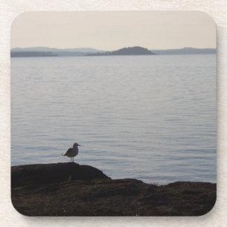 A Seagull Dreams Beverage Coaster