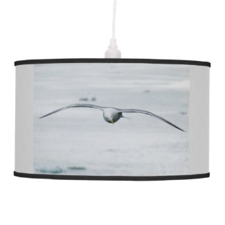 A Seagull in Flight x 3 Hanging Pendant Lamps