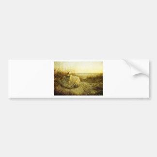 A Seagulls Tale Rafferty-Evans Art Car Bumper Sticker