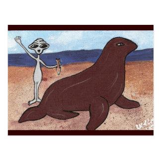 A Seal Friend Post Card
