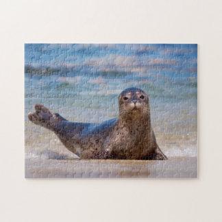 A seal on a beach along the Pacific Coast Jigsaw Puzzle