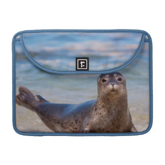 A seal on a beach along the Pacific Coast Sleeves For MacBook Pro