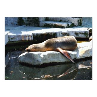 A Seal Sleeping on a platform Card