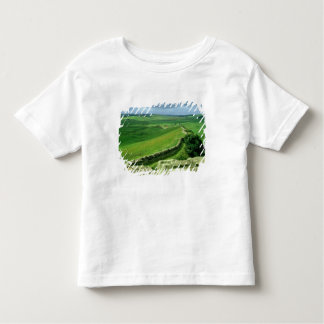A section of Hadrian's Wall, 2nd century AD (stone Toddler T-shirt
