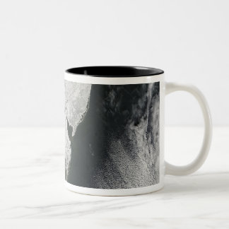 A severe winter storm 2 Two-Tone coffee mug