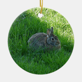 A Shady Bunny Ceramic Ornament