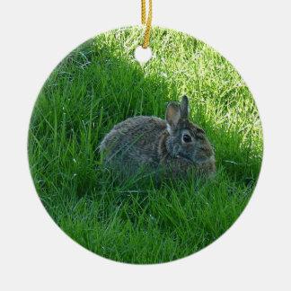 A Shady Bunny Ceramic Ornament