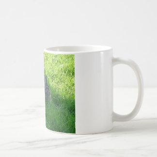 A Shady Bunny Coffee Mug
