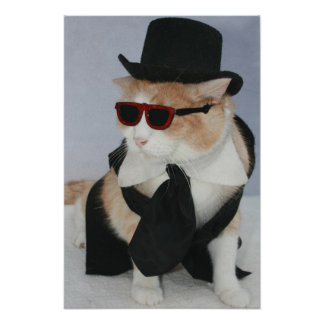 A Sharp Dressed Cat Poster