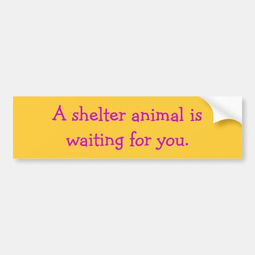 A shelter animal iswaiting for you. bumper stickers
