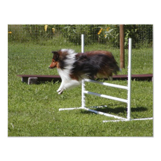 A Sheltie Clears the Bar Personalized Invite