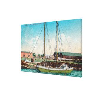 A Shipping Schooner ScenePetaluma, CA Stretched Canvas Print